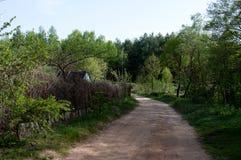 Natur av Ukraina Arkivfoto