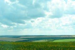 Natur av Ukraina Landskapet av ukrainska jordbruks- fält av sommarfält Lantgården Fält med havre, vete royaltyfri foto