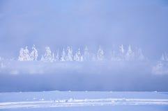 Natur av vintern, ånga över flodträden i snön Arkivfoton
