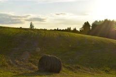 Natur av Vitryssland Fotografering för Bildbyråer