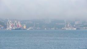 Natur av Vladivostok primorsky snowstorm för krai arkivfilmer