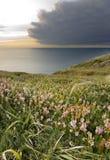 Natur bewölkt Meerlandschaft Lizenzfreie Stockfotos