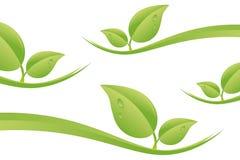 Natur-Blatt-Hintergrund Stockfotografie