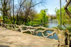 Natur-Brücke Stockfotografie