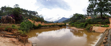 Natur Dalat in Vietnam Stockfotos