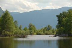 Natur in den Altai-Bergen lizenzfreies stockbild