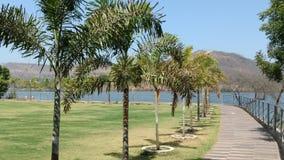 NATUR drzew wody krajobrazu sceneria Obraz Royalty Free