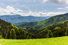 Natur entlang der Radfahrenweise von Malino Brdo zu Revuce in Slova Lizenzfreie Stockfotografie