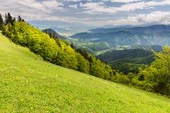 Natur entlang der Radfahrenweise von Malino Brdo zu Revuce in Slova Lizenzfreie Stockbilder