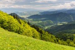 Natur entlang der Radfahrenweise von Malino Brdo zu Revuce in Slova Stockbild