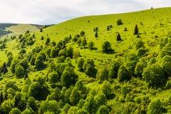 Natur entlang der Radfahrenweise von Malino Brdo zu Revuce in Slova Stockfotos