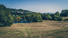 Natur fält, träd Fotografering för Bildbyråer