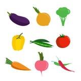 Natur för grönsakmatfärger royaltyfri illustrationer