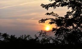 natur för ljus för bakgrundslandskapsolnedgång Royaltyfria Bilder