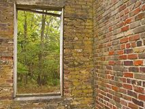 Natur-Fenster lizenzfreie stockfotografie