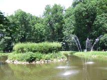 Natur-Foto 1 Lizenzfreie Stockfotografie