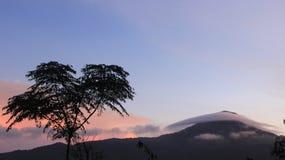 Natur-Fotografie lizenzfreie stockfotografie