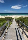 Natur från den härliga stranden i Sydney royaltyfri fotografi