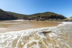 Natur från den härliga stranden i Sydney royaltyfri bild
