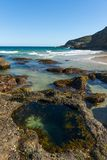 Natur från den härliga stranden i Sydney royaltyfria bilder