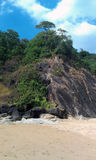 Natur Goa Royaltyfri Bild