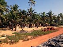 Natur Goa Royaltyfri Fotografi