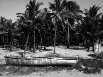 Natur Goa Arkivfoton