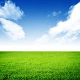 Natur-Hintergrund Stockbild