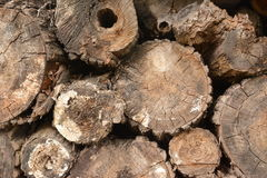 Natur-Holz Stockfotos