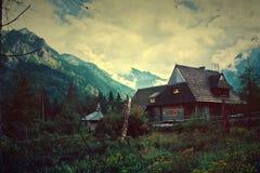 Natur i berg Arkivbild