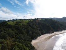 Natur i Nya Zeeland Royaltyfri Foto