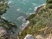 Natur i Nya Zeeland Arkivbilder