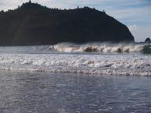 Natur i Nya Zeeland Royaltyfria Bilder
