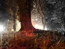 Natur i nytt lynne Royaltyfria Bilder