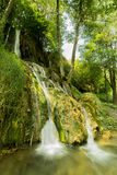 Natur i Serbien Stara Planina Arkivfoton