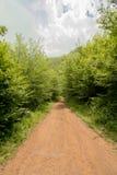 Natur i Serbien Stara Planina Royaltyfri Foto