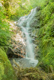 Natur i Serbien Stara Planina Arkivfoto