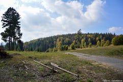 Natur I Slovakien Arkivbilder