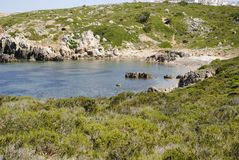 Natur i Spanien fotografering för bildbyråer
