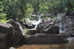 Natur i Sri Lanka Royaltyfri Fotografi