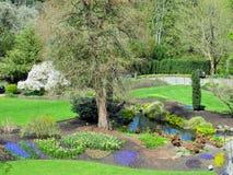 Natur i staden: Ljust landskap av drottningen Elizabeth Park Garden, Vancouver, 2018 arkivfoto