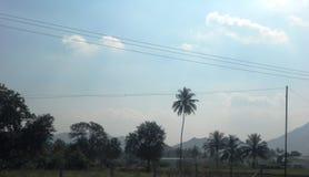 Natur i tamilen NaduPuducherry, en tyst liten stad på den sydliga kusten av Indien Royaltyfri Fotografi