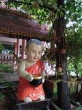 Natur i thailand Arkivfoton