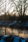 Natur i tidig vår Fotografering för Bildbyråer