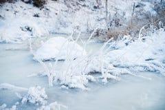 Natur i vinter, snöig och frostigt royaltyfri bild