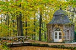 Natur im Herbst Stockbild