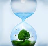 Natur im Hourglass stockfotos