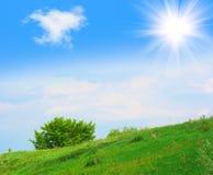 Natur im Juni stockfoto