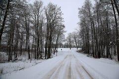 Natur im Lettland för vintersnölandskap Royaltyfria Bilder