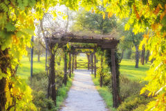 Natur im Park Stockfotografie